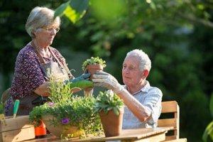 Exclusive Senior Living Programs